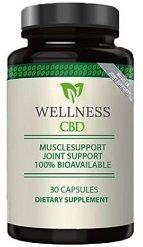 Wellness CBD