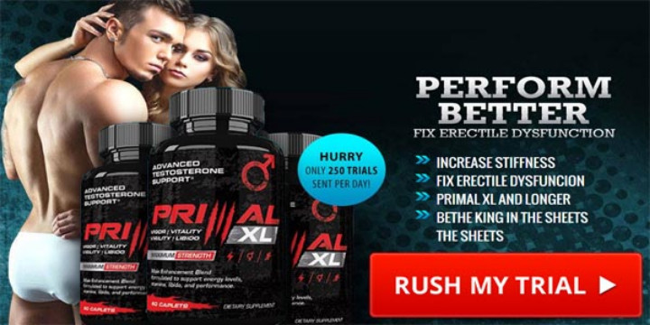 Primal XL - 1