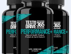 Testo Drive 365