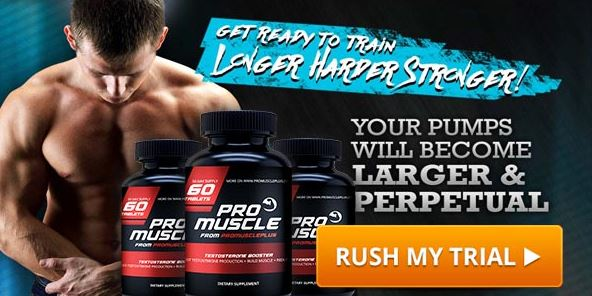 Pro Muscle Lab-1