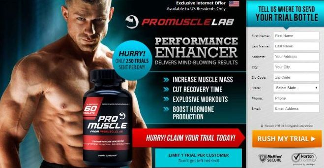 Pro Muscle Lab-2